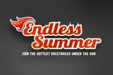 Gedlich Endless Summer Logo